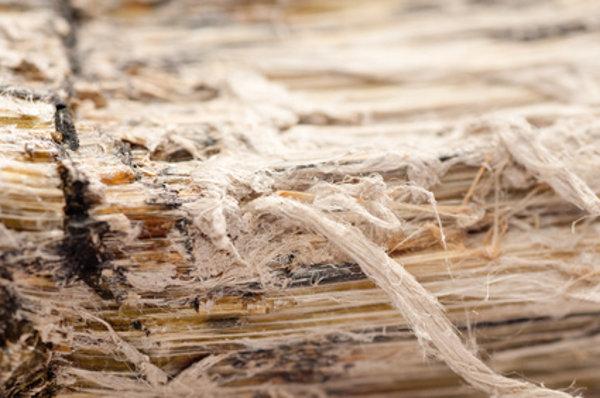Asbestfaser © farbled-01, fotolia.com
