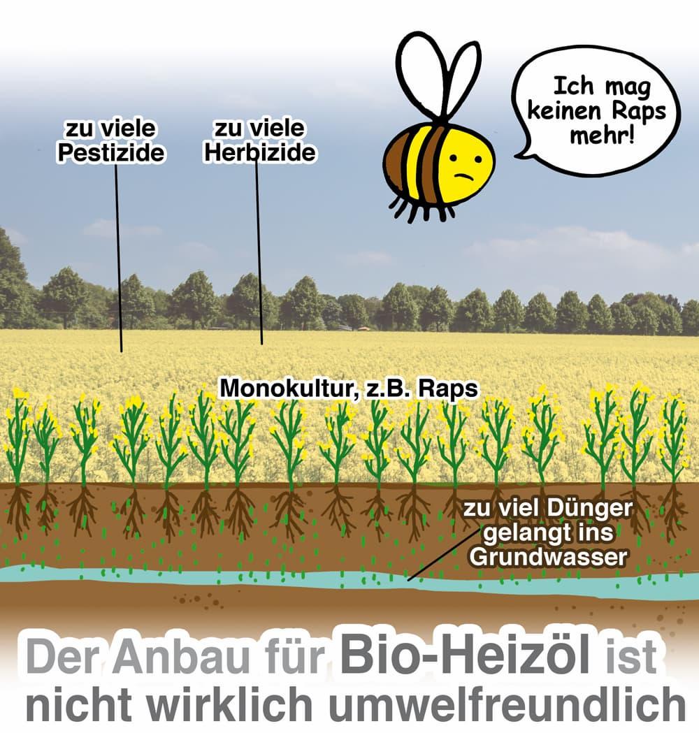 Der Anbau von Bio-Heizöl ist nicht wirklich umweltfreundlich