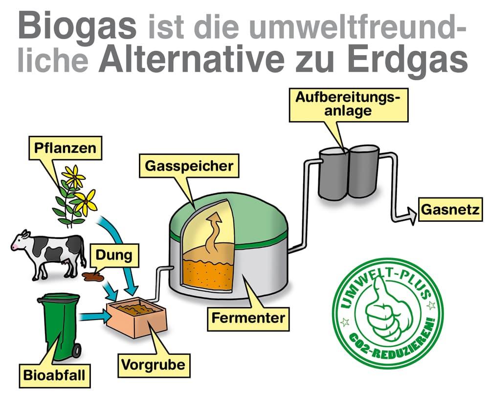 Biogas ist die umweltfreundliche Alternative zu Erdgas
