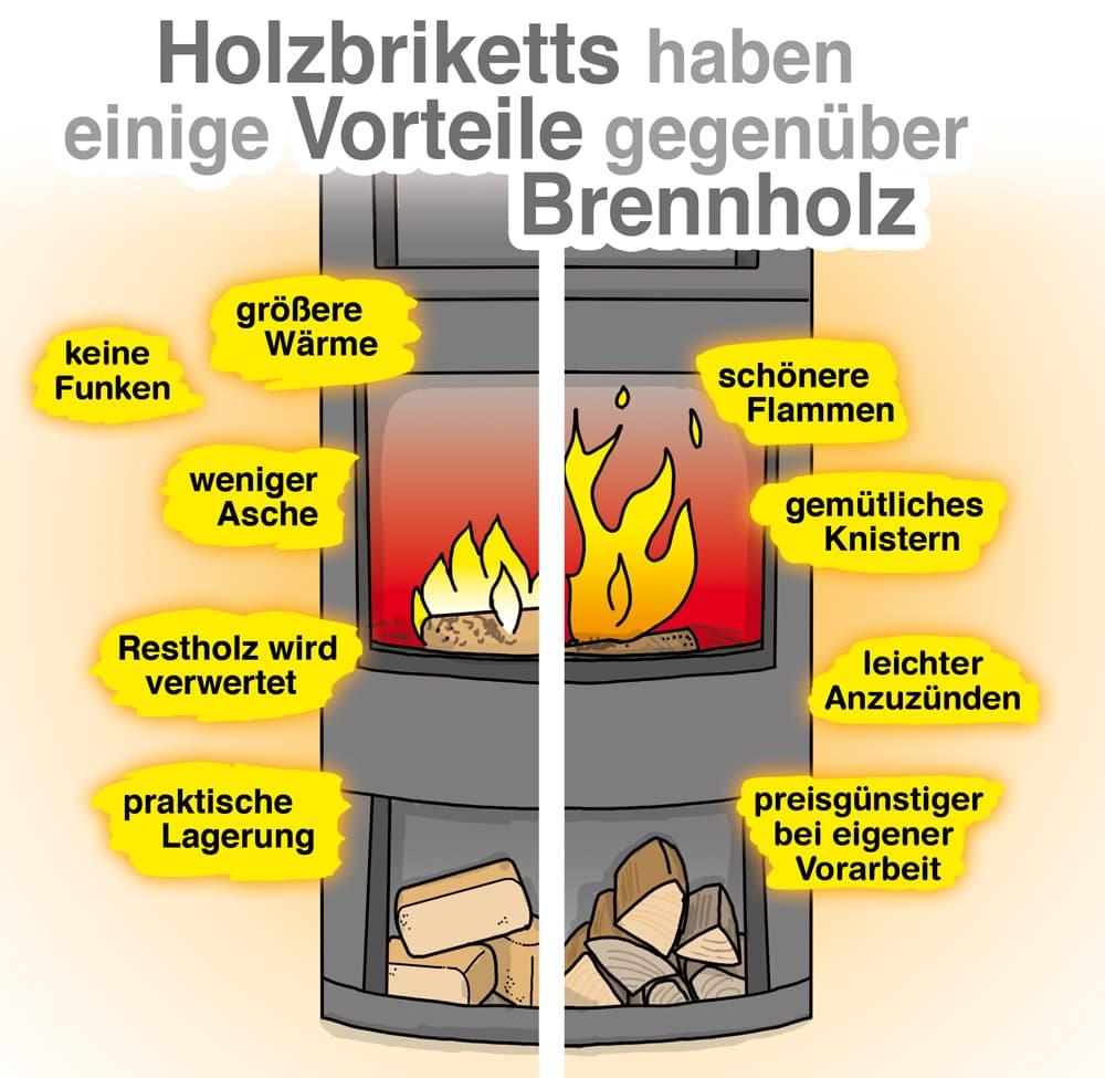 Vergleich Brennholz und Holzbriketts