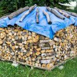 Brennholz richtig trocknen und lagern