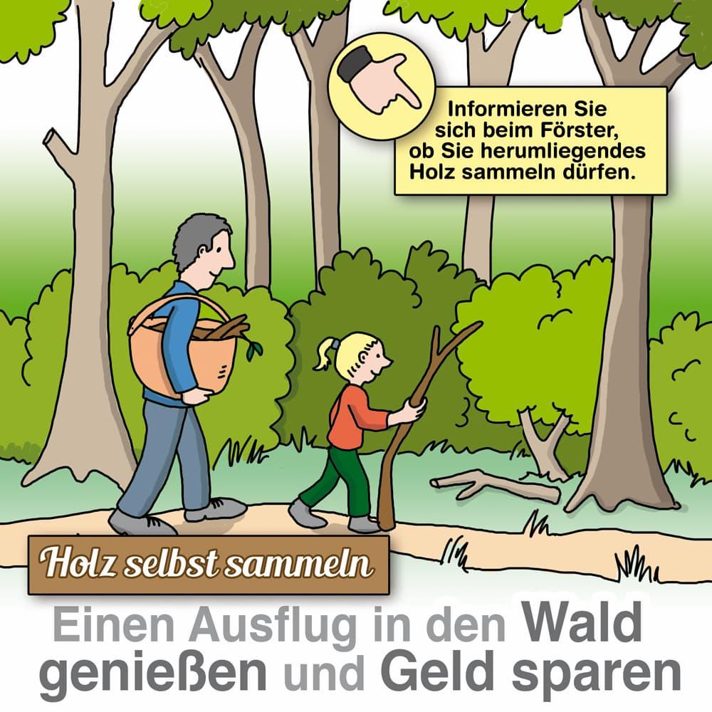 Brennholz selber im Wald sammeln