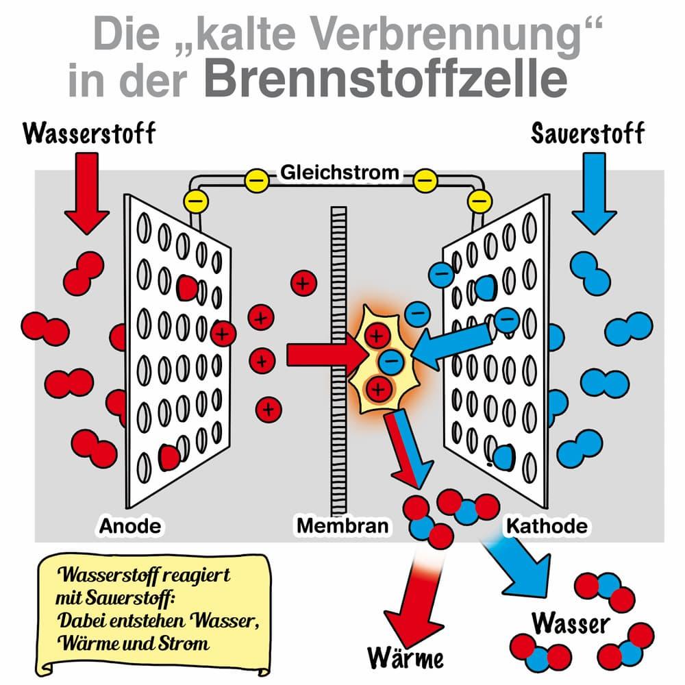 Erklärt: Die kalte Verbrennung in der Brennstoffzelle