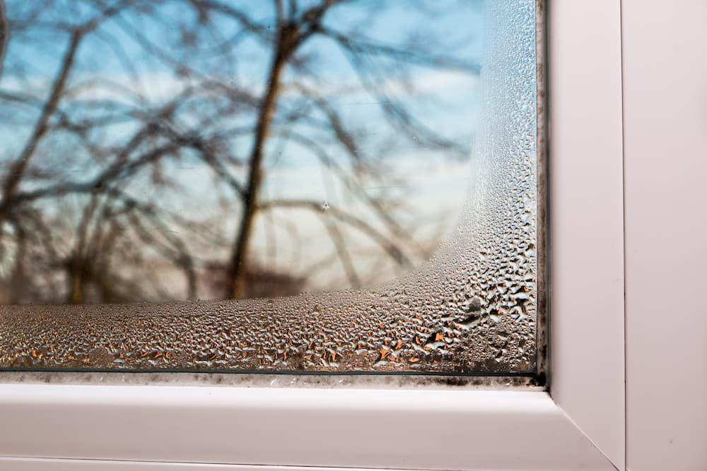 Feuchtigkeit am Fenster © GHristo, stock.adobe.com