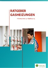 Ebook Gasheizung