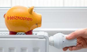 Flüssiggasheizung Kosten
