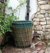 Wasser sparen: Garten