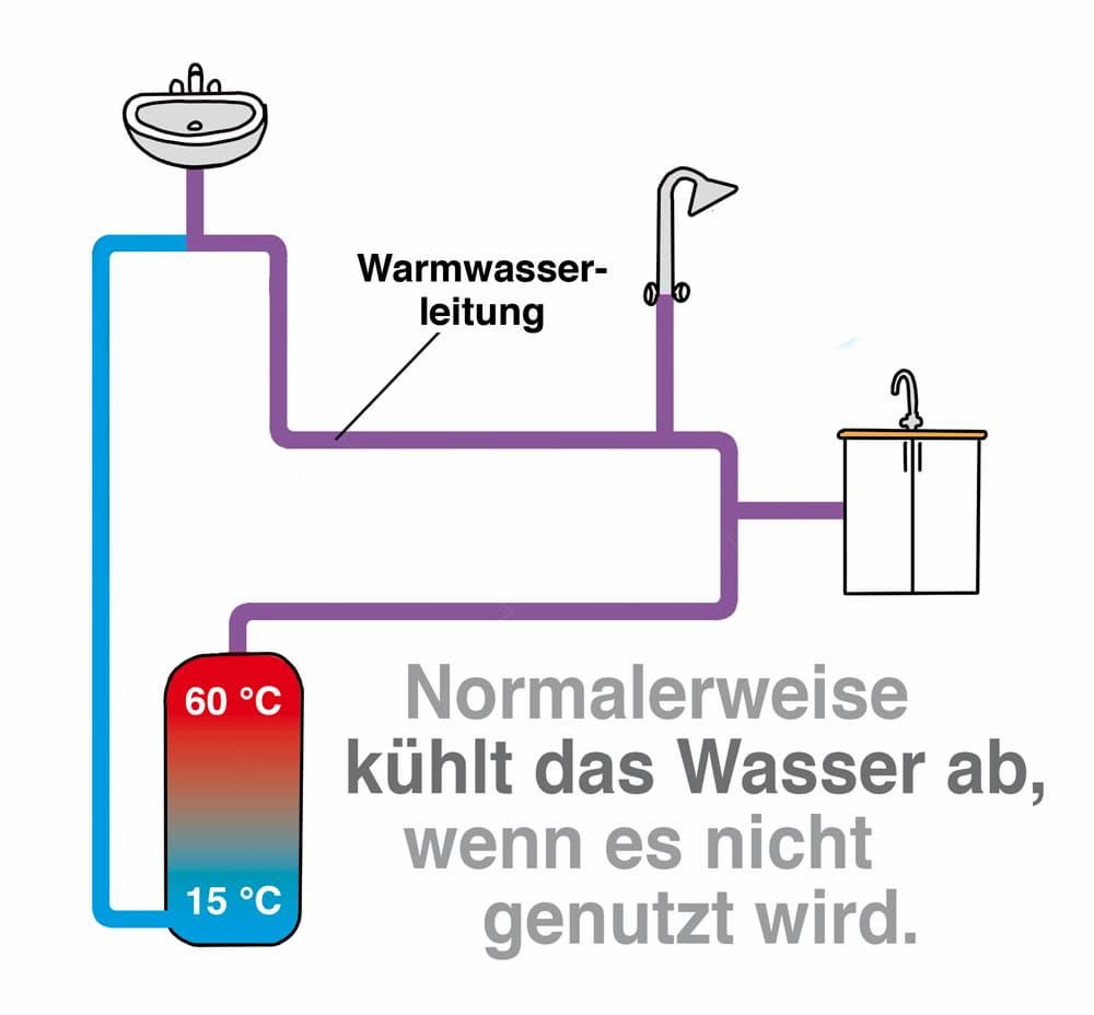 Warmwasserbereitung ohne Zirkulationsleitungen