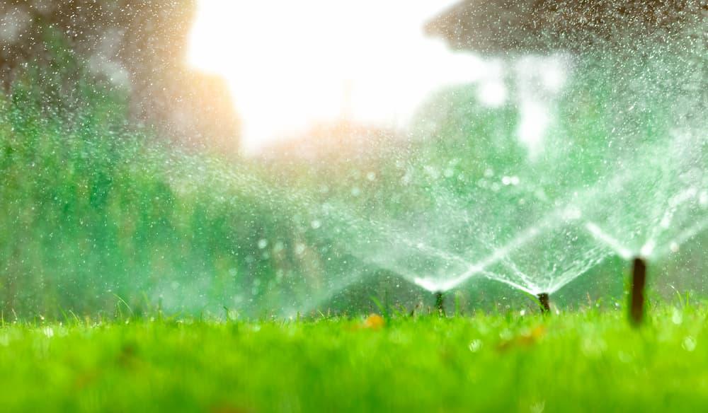 Wassersprinkler im Garten © Artinun, stock.adobe.com
